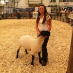 2011 Provincial Exhibition: Champion Suffolk ewe lamb