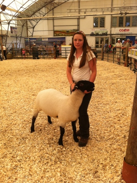 2011 Provincial Exhibition: Champion Suffolk ewe lamb