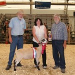 2011 Provincial Exhibition: Market lamb