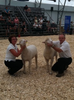 2011 Provincial Exhibition: the Sanfords